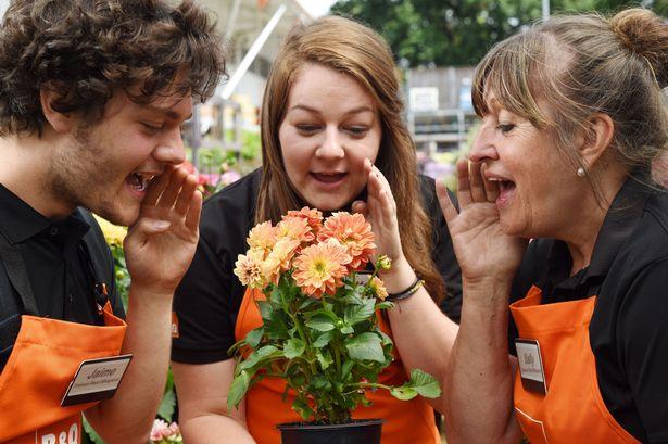 thuê nhân viên tâm sự với hoa-vlthat