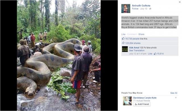 Hình ảnh trăn ăn thịt người lan truyền trên nhiều mạng xã hội
