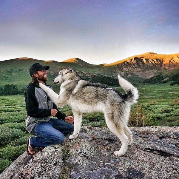 Ảnh siêu dễ thương về chú sói lai cùng chủ đi du lịch khắp thế giới 12