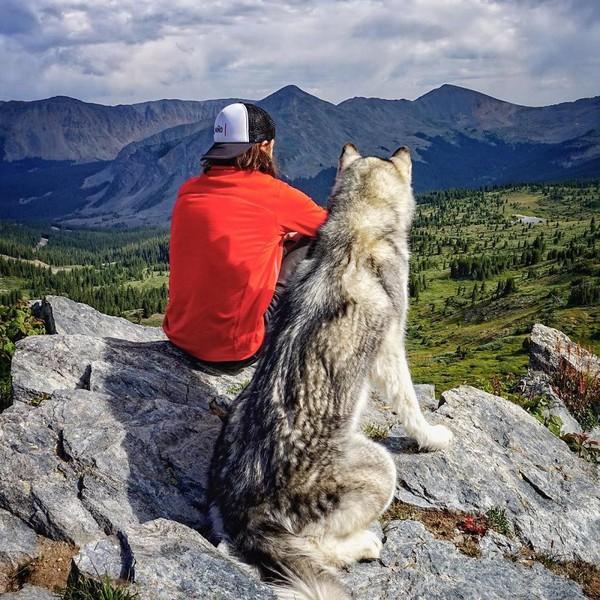 Ảnh siêu dễ thương về chú sói lai cùng chủ đi du lịch khắp thế giới 18