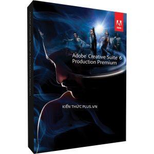 Adobe CC và Adobe CS giống nhau khác nhau điểm gì?