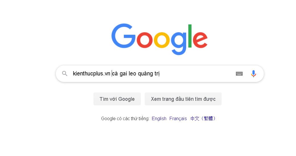 dua-website-len-cong-cu-tim-kiem-google
