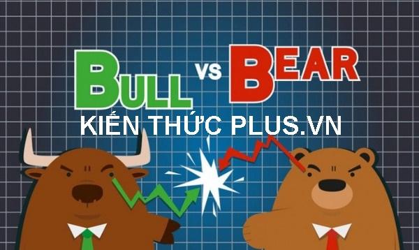 """Thị trường con gấu"""" (bear market) và """"Thị trường con bò tót"""" (bull market) là gì?"""